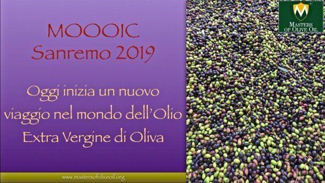 MASTERS OF OLIVE OIL INTERNATIONAL CONTEST (2019) CERCHIAMO I MIGLIORI OLI DEL MONDO