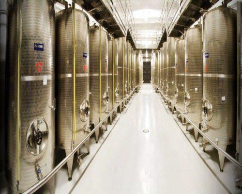 best olive oil stoccaggio olio extravergine