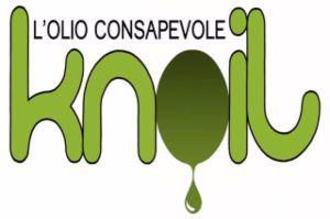 knoil logo chiaro_300x200