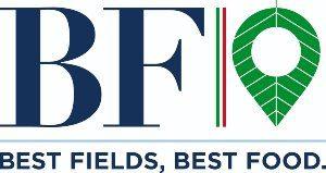 BF_SpA_logo_300x160