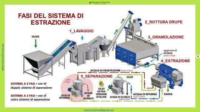 corso_per_frantoiano_2021_masters_of_olive_oil_academy_